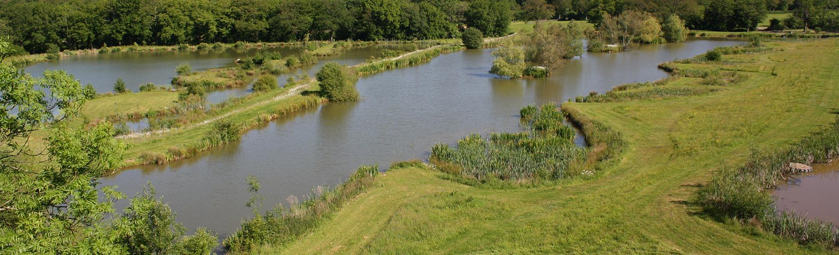 clover fishing lake - newdigate farms estate