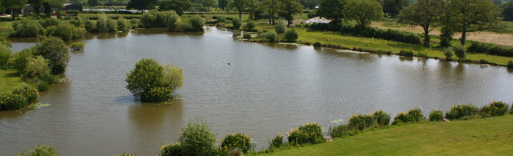 guinea fishing lake - newdigate farms estate