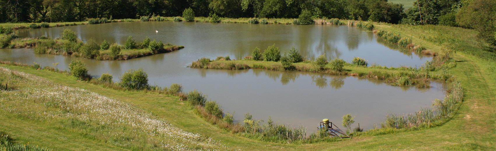 jennys fishing lake - newdigate farms estate