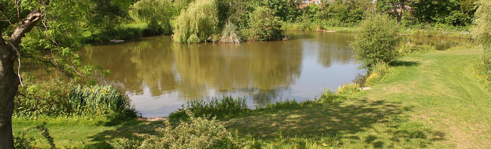 paddock fishing lake - newdigate farms estate